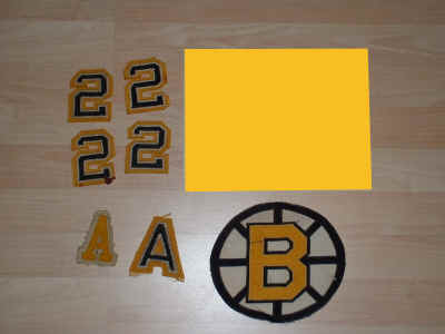 Bruins lot 1.JPG (253682 bytes)